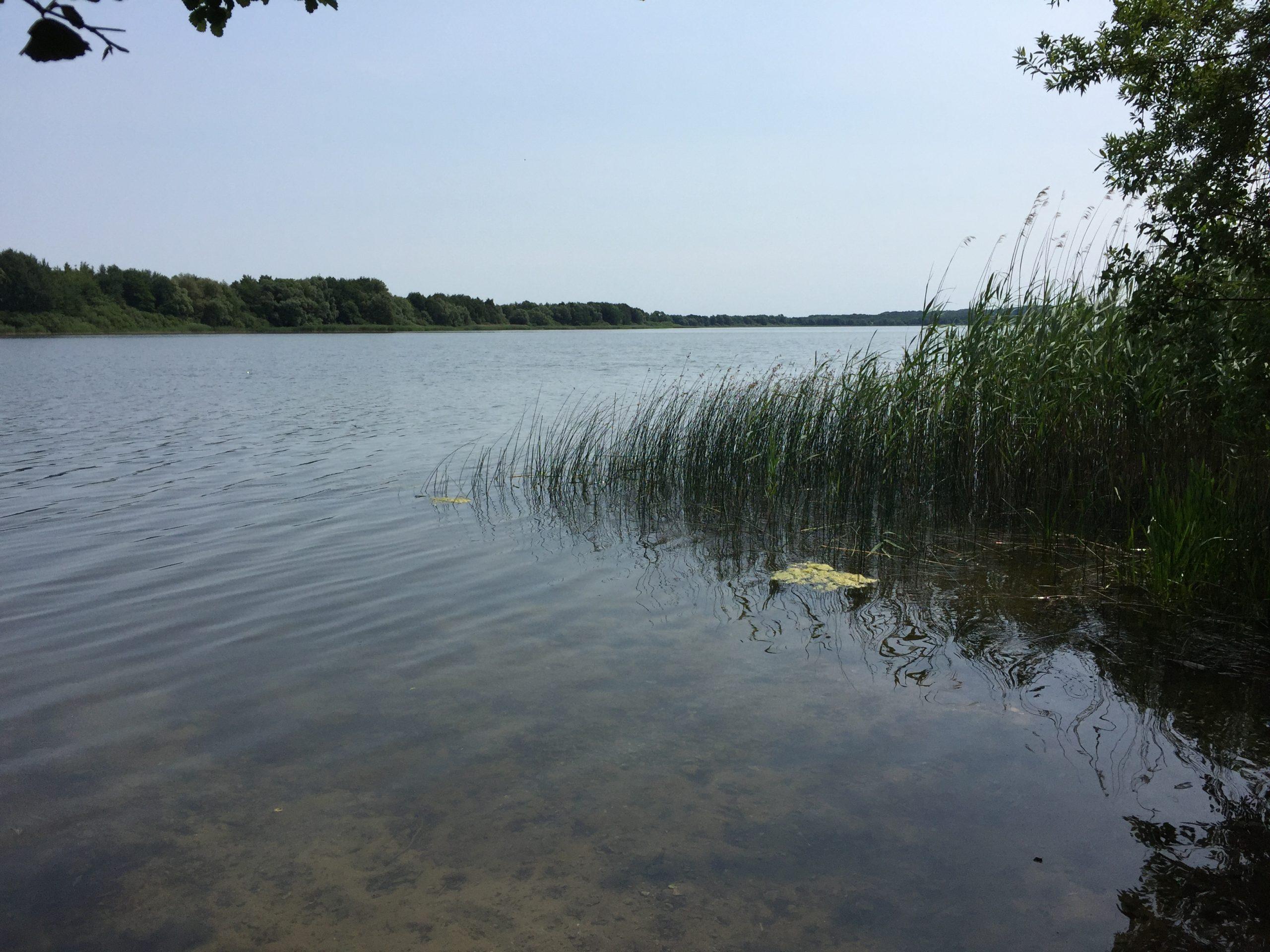 See bei Lübeck