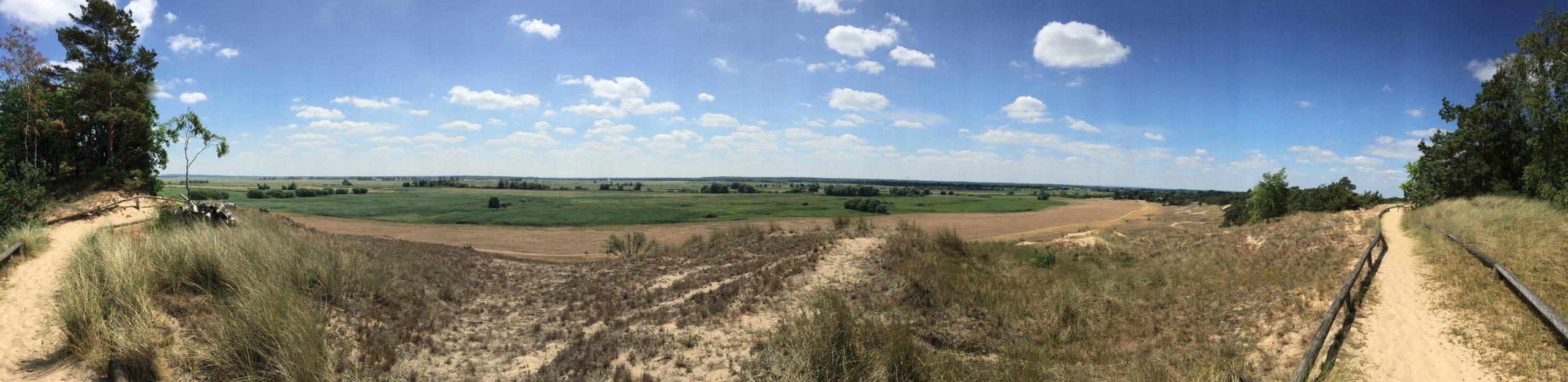 Panorama von den Binnendünen