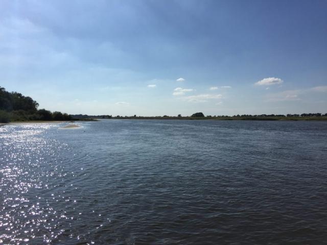 Fährfahrt auf der Elbe