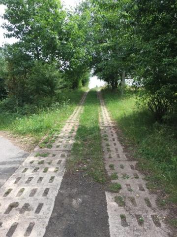 Erneut kreuz der Kolonnenweg