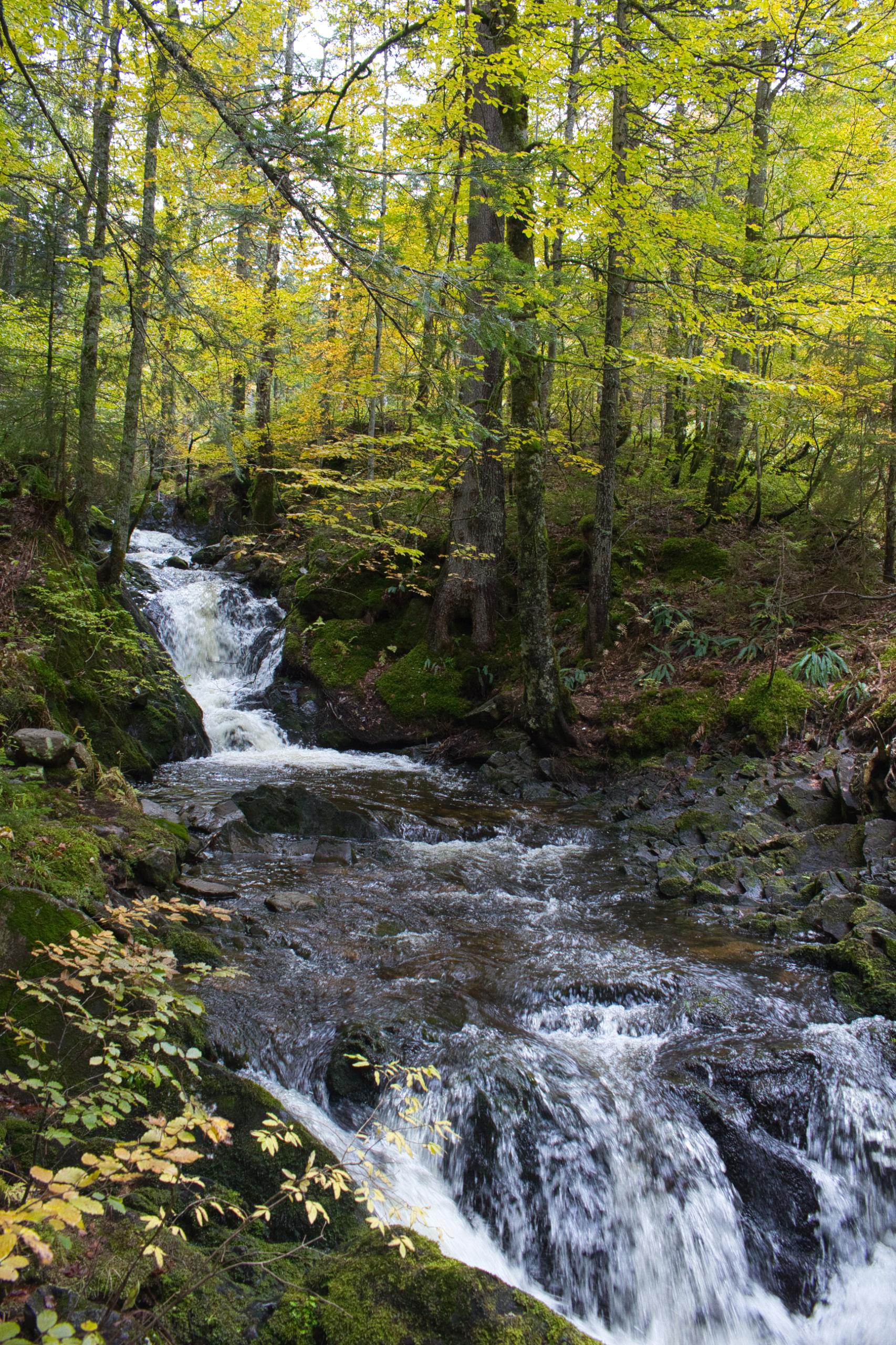 Wasserfälle im Maria Loch